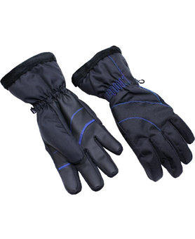 Blizzard Viva Harmonica ski gloves black/blue