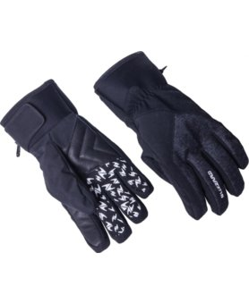 Blizzard Chamonix ski gloves black/grey