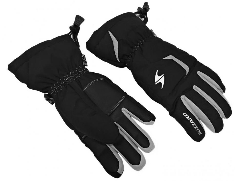 Blizzard Rider Junior ski gloves black/silver